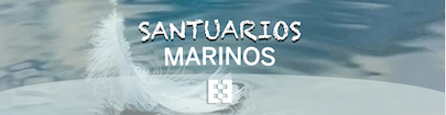 Santuarios marianos